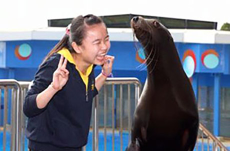 The guests watched Sea Dreams! performance with the Park's dolphins and sea lions. Some lucky guests also had close encounters with the Park's animal ambassadors.