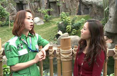 Picture 1: Elke, our giant panda trainer, shares her experience of getting along with giant pandas
