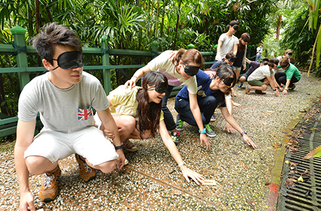 """Ultimate Survival"" Team-building Programme"