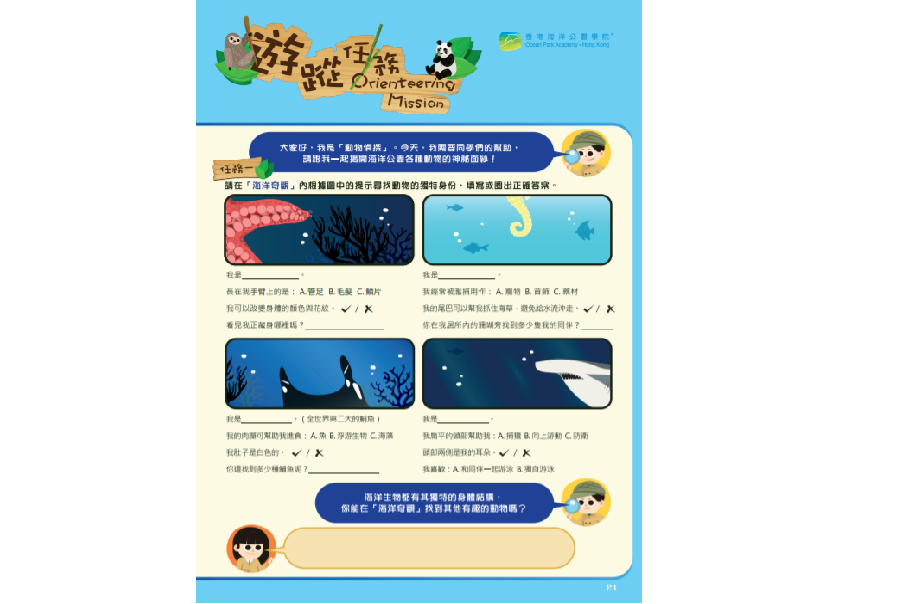 Kindergarten and Primary Student – Life-wide Learning Pack
